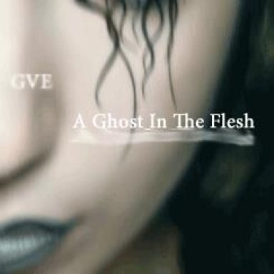 A Ghost In The Flesh (Demo Version)