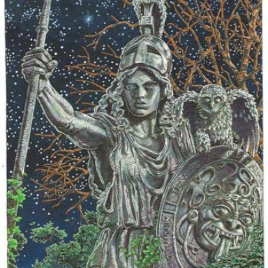 ZRS DICARLO / REDEYEC ATHENA'S WISH EXCLUSIVE