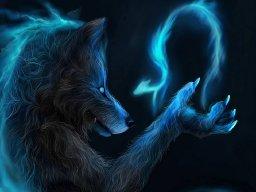 """"""" Crazy Wolf """""""