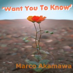 'Want You To Know'