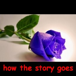 How the Story Goes