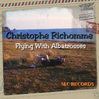 Flying with albatrosses