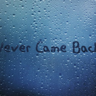 Never Came Back