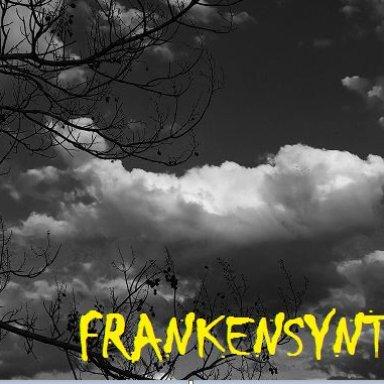 FrankenSynth