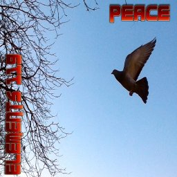Peace By Elements 119 Featuring BAMIL