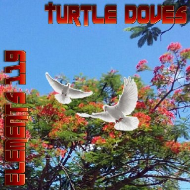 Turtle Doves By Elements 119 Featuring BAMIL and Lady N