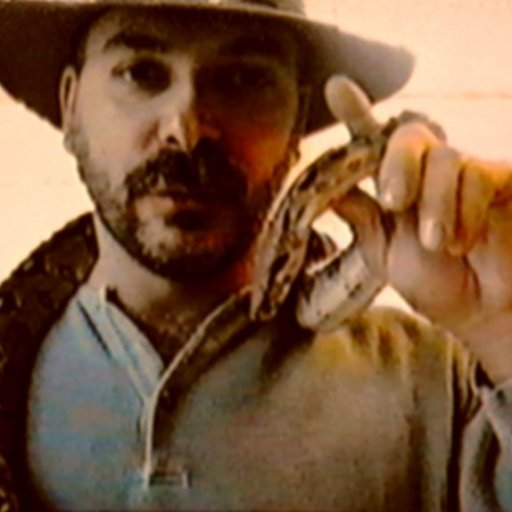 1995g