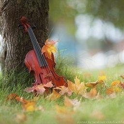 Music of Auumn.jpg