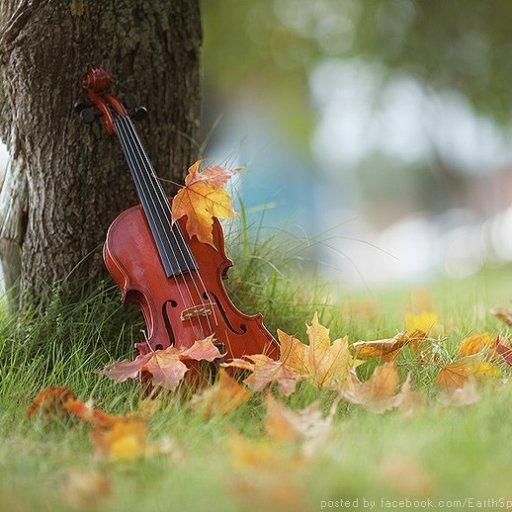 Music of Auumn