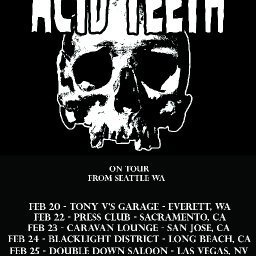 Acid Teeth February Tour Dates.jpg