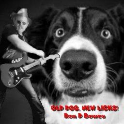 Old Dog cover.jpg