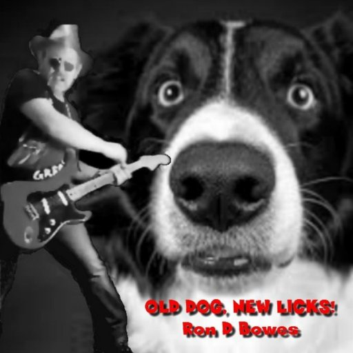 Old Dog cover