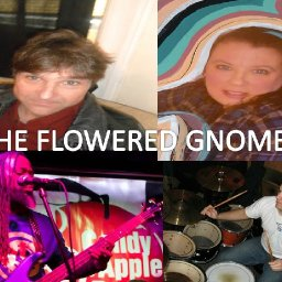 The Flowered Gnomes