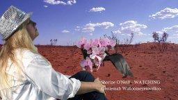 Sharine O'Neill - Watching/Goniemah Wallomeyenwalloo