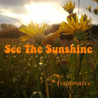 See The Sunshine