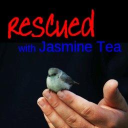 Rescued - with Jasmine Tea