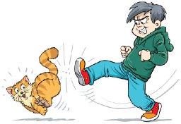 Stop Kicking That Cat