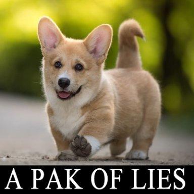 A PAK OF LIES