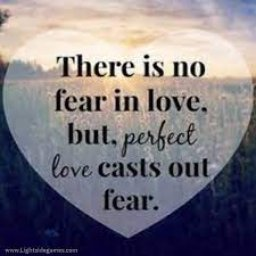 NO FEAR , ONE LOVE