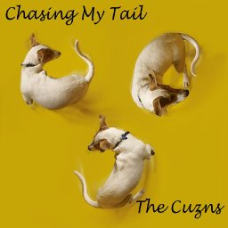 Chasing My Tail (Feat. The Cuzns FJ, RB, LR)
