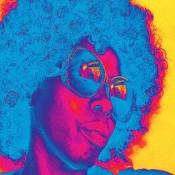 Funky Diva small.jpg