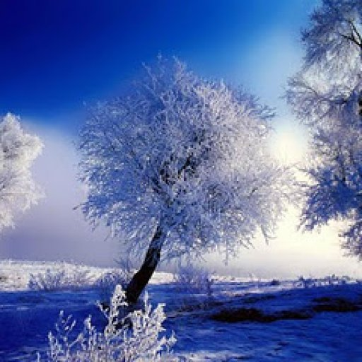 morning-winter-high-quality-wallpaper455