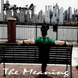 The Meaning Cover.jpg