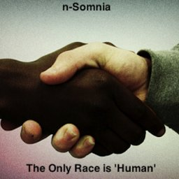 20 - The Only Race is 'Human'.jpg