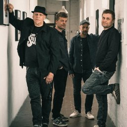 The Fine Chairs